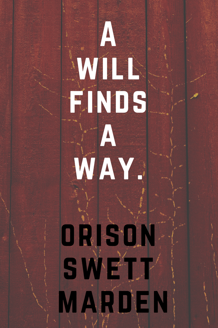 A will finds a way. Orison Swett Marden | 30 Quotes To Inspire Positive Thinking and Personal Growth | Chiclypoised | Chiclypoised.com