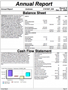CAPSIM Andrews Annual Report - Balance Sheet and Cash Flow