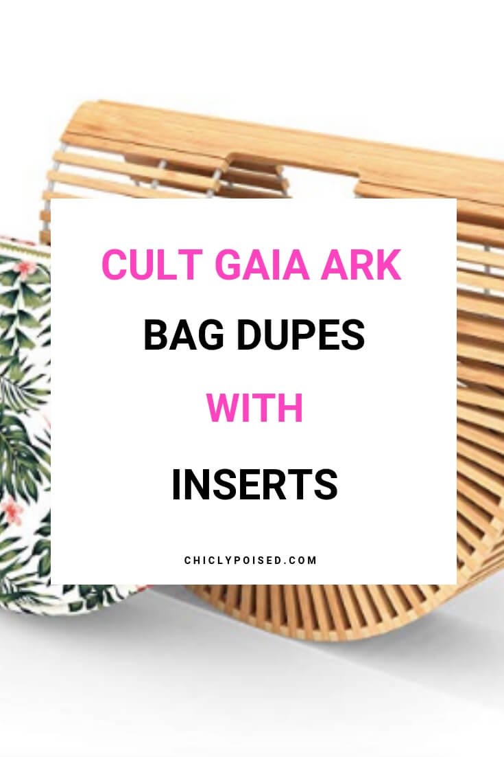 Cult Gaia Ark Bag Dupes With Inserts