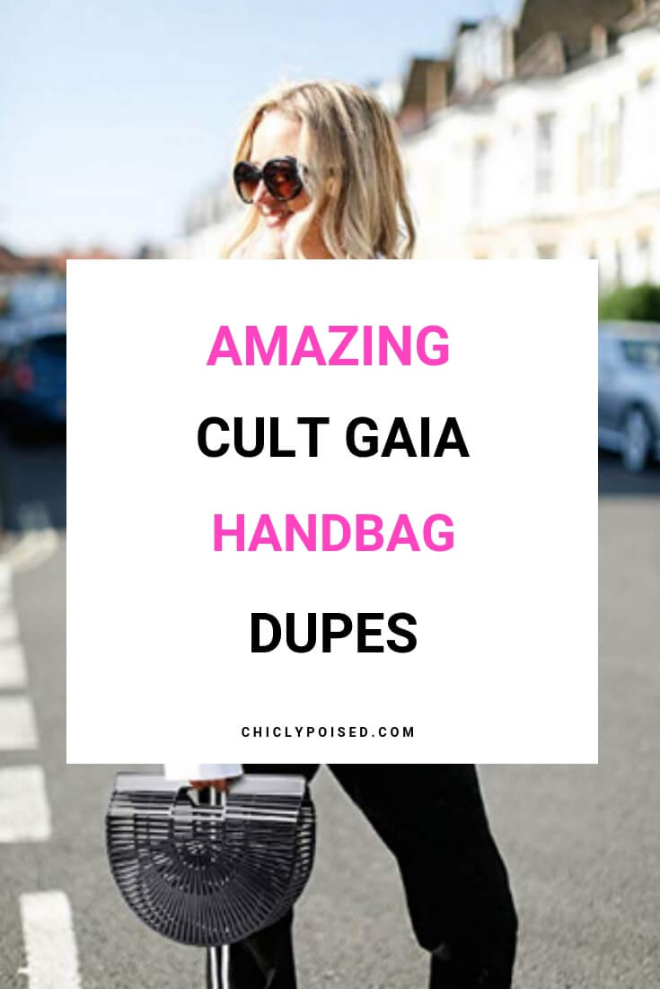 Great Cult Gaia Handbag Dupes