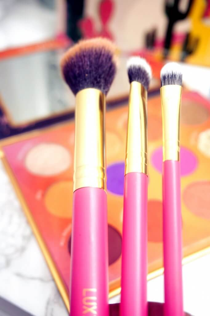 BoxyCharm Unboxing April 2019-Luxie Summer Daze Brush Set