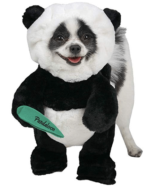 Halloween Costumes For Dogs Panda Puppy Halloween Costume