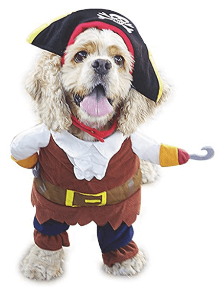 Halloween Costumes For Dogs Pirates of The Caribbean