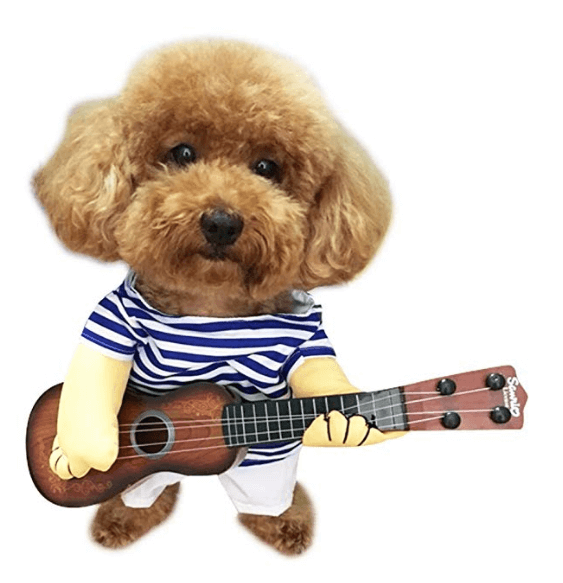 Halloween Costumes  For Dogs Rock and Roll Player