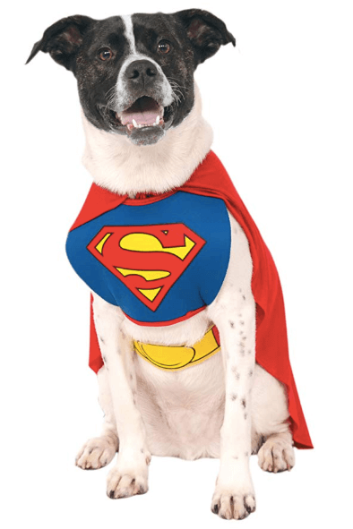 Halloween Costumes  For Dogs Superman Doggie Halloween Costume