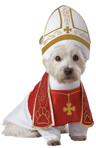 Halloween Costumes For Dogs Holy Hound Doggie Halloween Costume